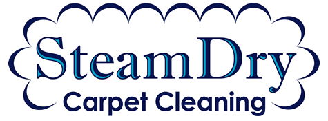 Fast Dry Carpet Cleaning Nashville Franklin Brentwood TN